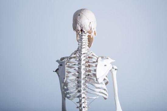 背骨矯正・骨盤矯正・むげん整骨院