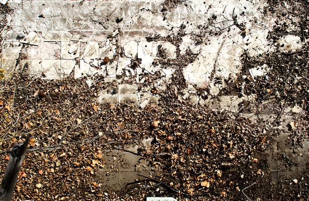 old floor12.jpg