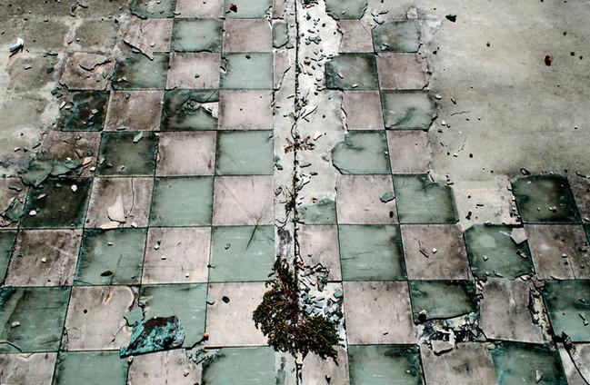 reen floor 1.jpg