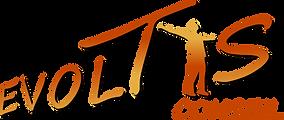 Logo de la société EVOLTIS Conseil, l'atout jeune de l'orientation à l'emploi