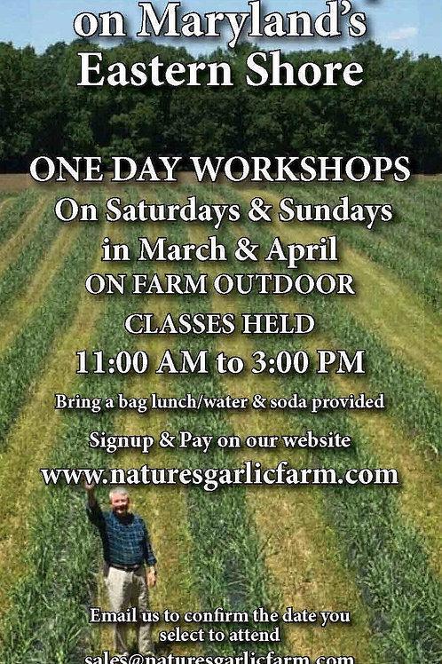 Garlic Workshop for March & April 2021