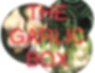 CSA Garlic Box Full Size.jpg
