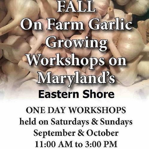 Garlic Workshops in September & October