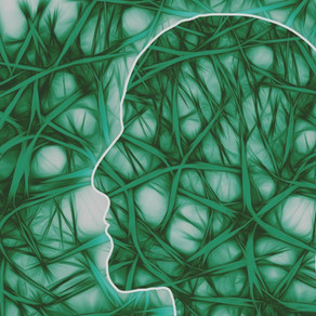 Atšķirība starp serotonīnu un dopamīnu