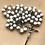 Thumbnail: Capped Rosary