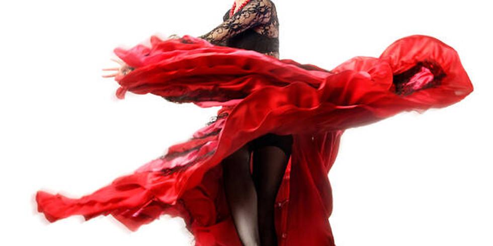 Flamenco Dinner Show at the Historic El Cid