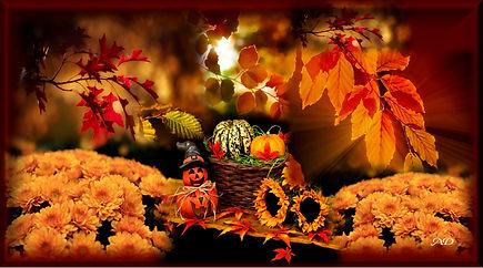 Fall Smiles by Anita Dickason.jpg