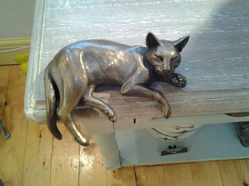 Shelf Cat II