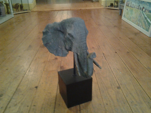 Elephant Head On Base