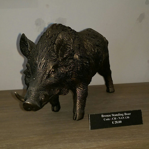 Standing Boar