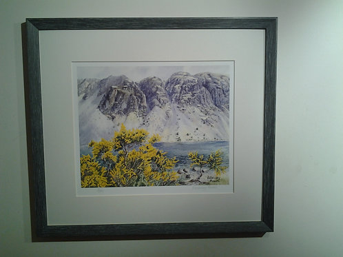 Wastwater Screes And Gorse