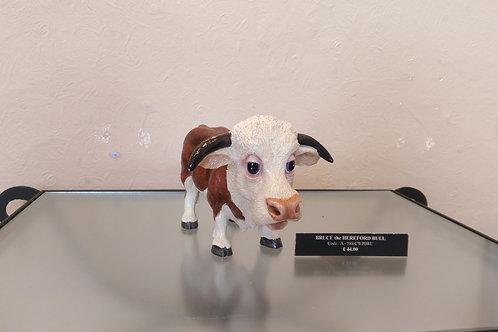 Bruce The Hereford Bull