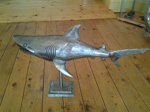 Small Shark On Plinth