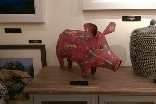 Pig-Rajasthan Rascals