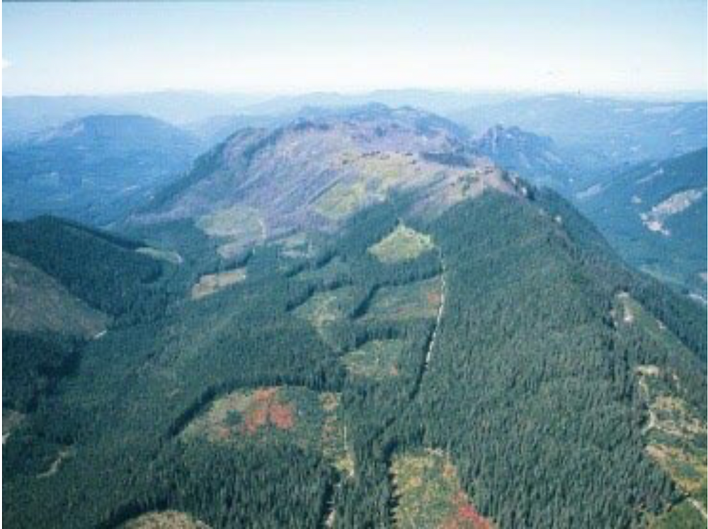 Aerial view of forest fragmentation.