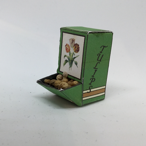 Seed Box - Tulip