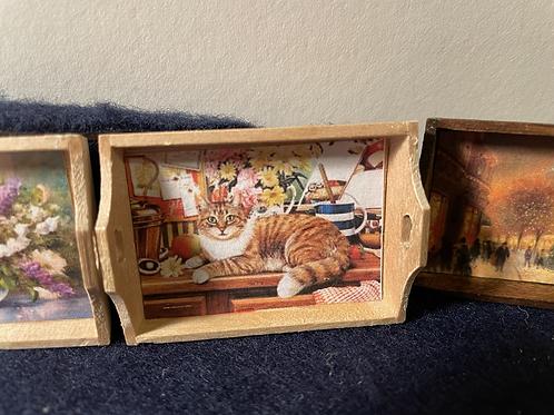 Tray cat