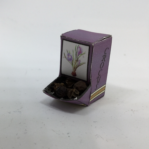 Seed Box - Crocus