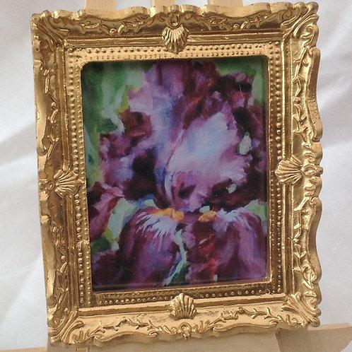 Picture 173 - Iris