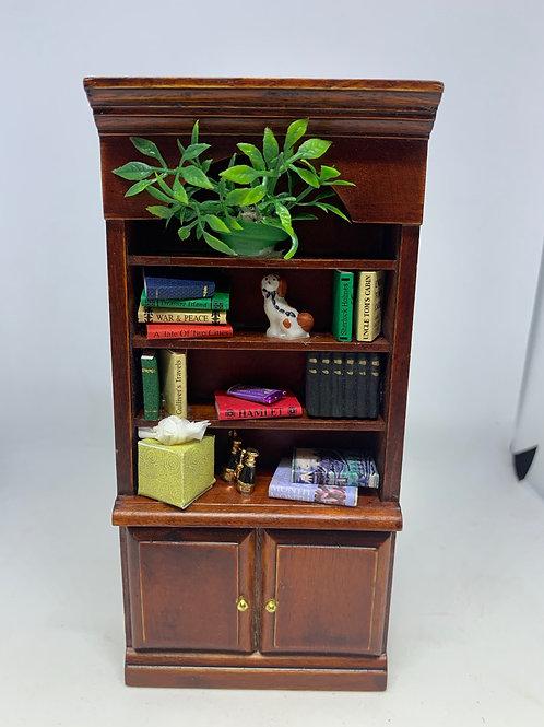 Bookcase / Study Shelves