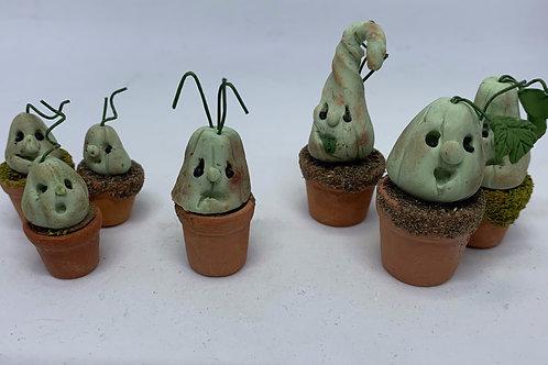 Mandrake x1 (3 sizes available)