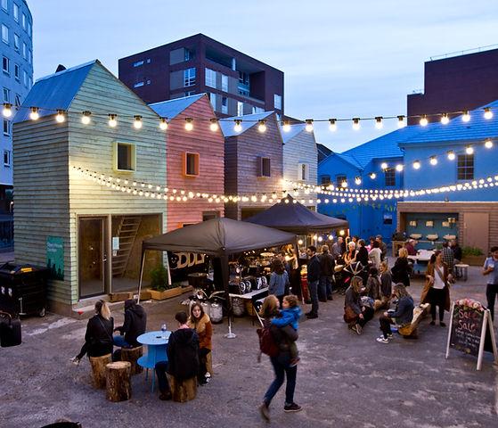 Blue_House_Yard_Jan_Kattein_Architects_.