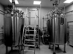 bioreactors%20dairy%20industry_edited.jp