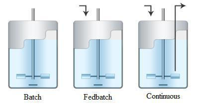 bioreactor cultivation process types