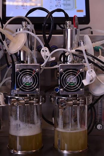 Twin 1L bioreactor