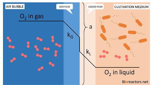 kLa gas liquid oxygen mass transfer