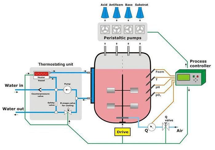 Process control bioreactor