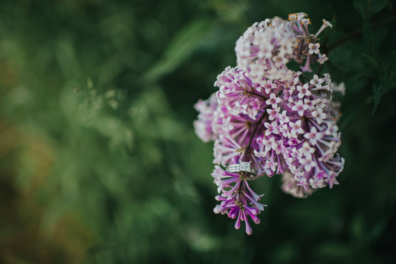 Wisconsin Outdoor Unposed Lifestyle Engagement Photographer