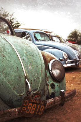 Old Bugs