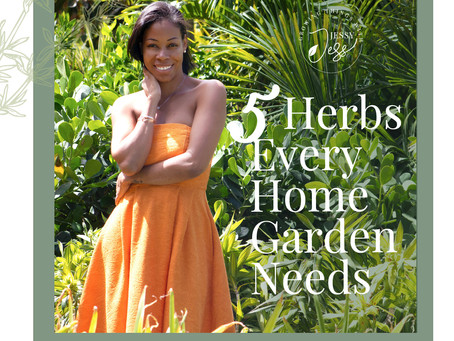 5 Herbs Every Home Garden Needs!