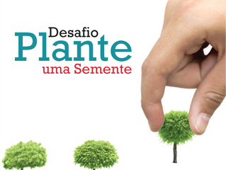 Desafio Plante uma semente