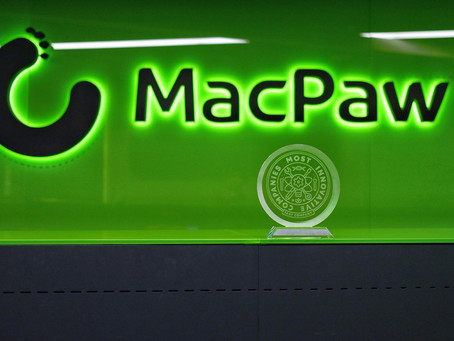 Code, sweat, and tears: How Ukrainian MacPaw went from a student startup to millions of users