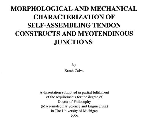 Morphological and Mechanical Characterization of Self-Assembling Tendon Constructs and Myotendinous