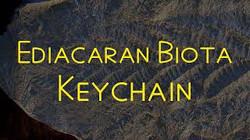 Ediacaran biota keychain documentary