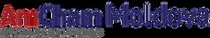 logo%20AmCham_edited.png