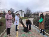 Promovăm educația ecologică prin activități practice