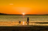 Sunset Walkies