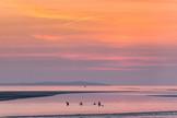 Kids swimming at dusk