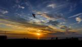 Sunset Kite Flying