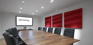 boardroom ess 2.jpg