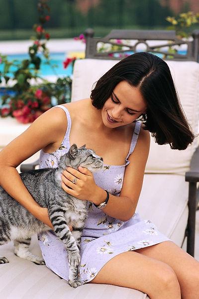 Cat-GrayStripe-GirlLou#905.jpeg
