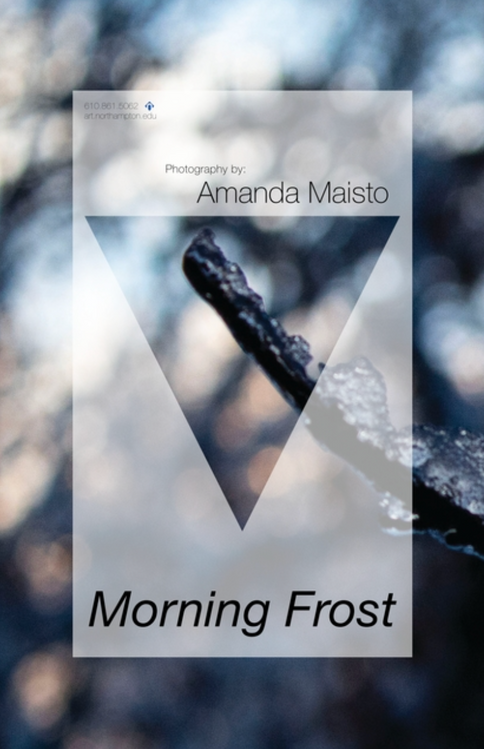 Morning Frost Poster Series