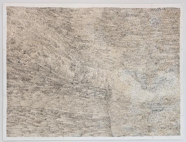 Zeichnung Tusche auf Aquarellkarton, Kreidefarbe aus Totholz 152cm x 200cm 2018