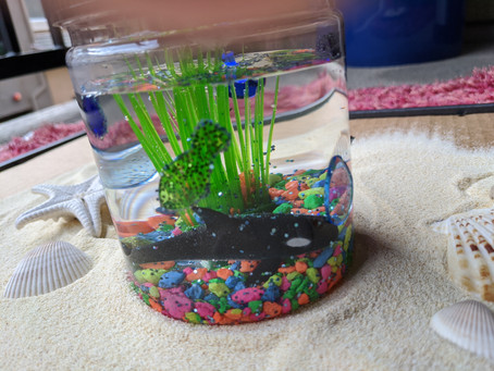 DIY Mason Jar Fish Aquarium for 2-5 year olds