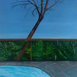 hockney pool