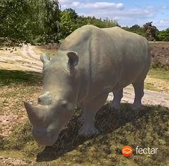 rhino_in_ar_in_fectar.jpeg